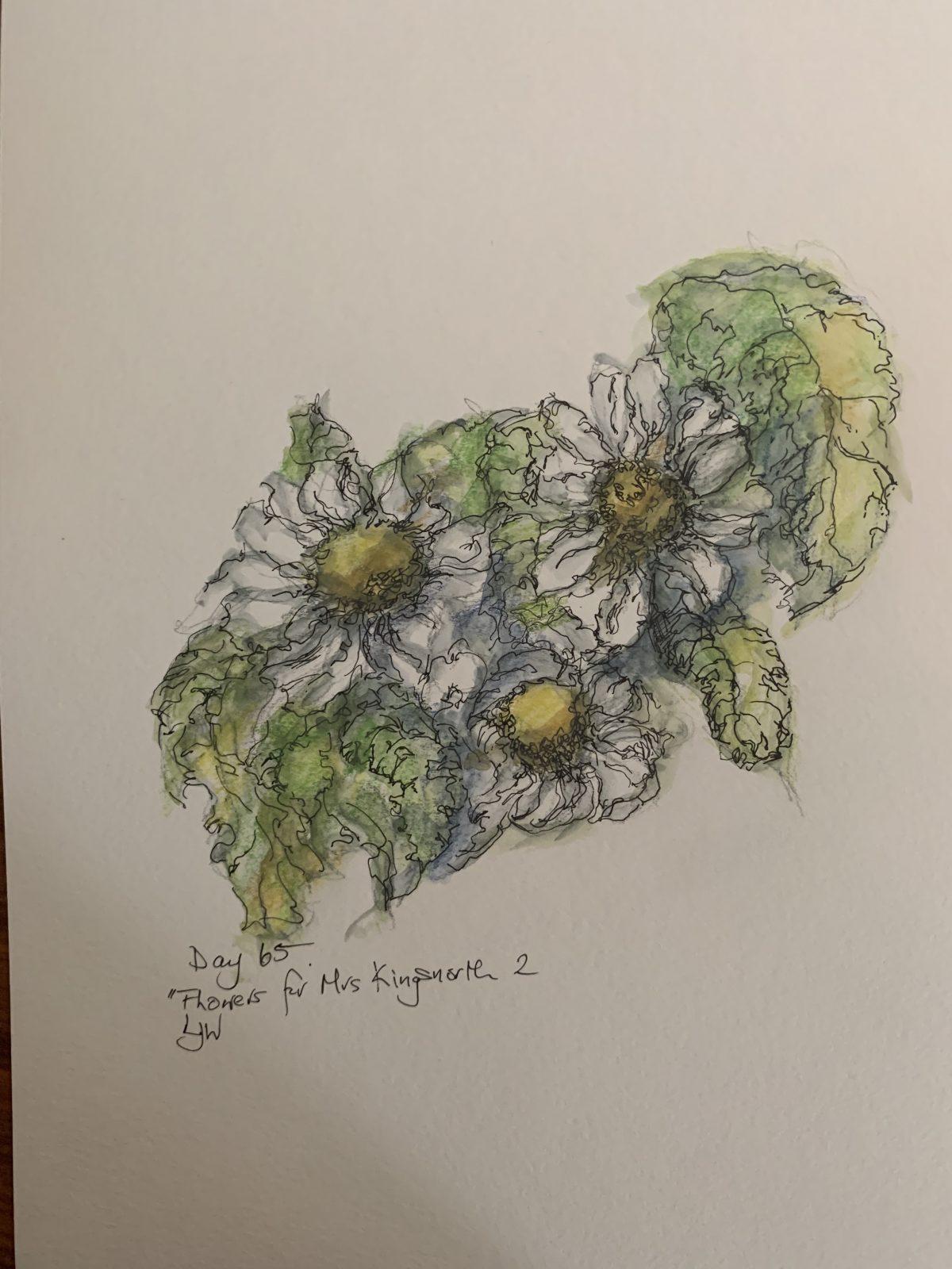 Cornish daisies 1