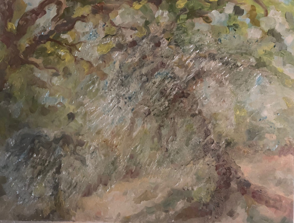 Andrea's Olive trees